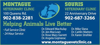 montague veterinary clinic logo sponsors